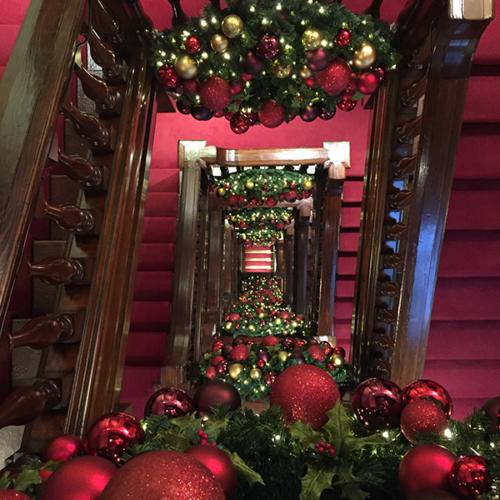 Arnott's Christmas